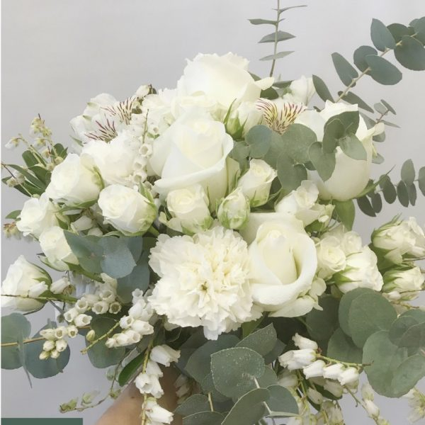 white beauty2