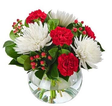 good-tidings-christmas-flowers-perth